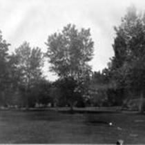 Grassy lawn with trees, State Normal School campus