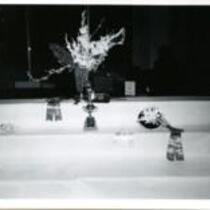Ninth Annual Colorado Gladiolus Show, Denver, Colorado