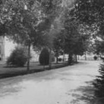 Shaded avenue, State Normal School campus