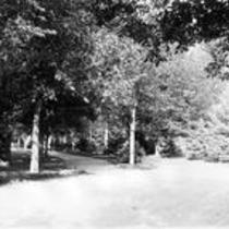 Entry to a shaded walking path, State Normal School campus