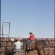 Cowboy riding horse into corral, 6666 Ranch, Texas