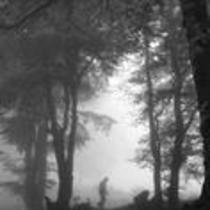 James A. Michener walks in a forest
