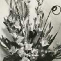 Gladiolus festival brochure